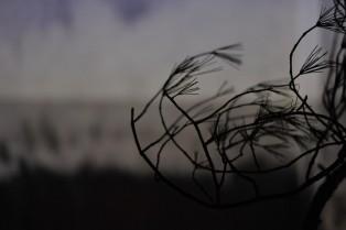 Ange Leccia - Shuhô - Hiroshima Art Document